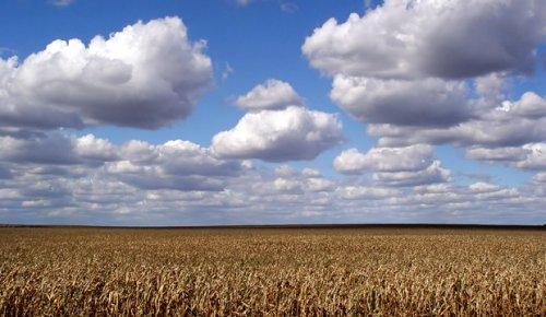 Небо падает? Спутники НАСА обнаружили снижение облаков по всему миру