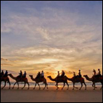 Кости верблюдов указали на противоречия в Ветхом Завете