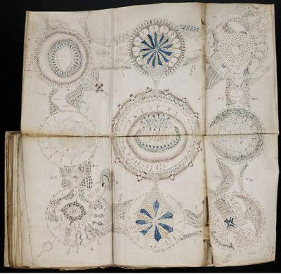 Загадочный манускрипт Войнича действительно имеет скрытое послание