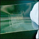 Корейцы представили дешевый способ выращивания графеновых пластин