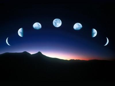 Для жизни на Земле не нужна Луна