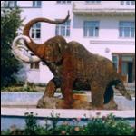 Якутские ученые предложили создать первое в мире криохранилище мамонтов