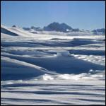 Ученые обнаружили сходство между Антарктикой и Калифорнией