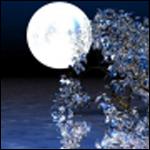 Почему самые фантастические и самые яркие сны снятся во время полной луны