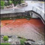 В Швейцарии река окрасилась в кровавый цвет