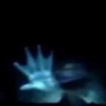 Подводники утверждают, что встретились лицом к лицу с русалкой