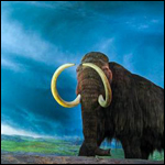 Причиной гибели мамонтов был не климат, а люди