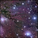 НЛО и гиганты Соломоновых островов    Часть 2. Гиганты