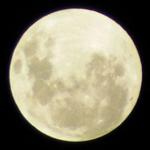 Приливная волна изменила форму Луны
