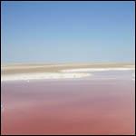 В пустыне Туниса появилось озеро