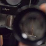 Лазеры увеличили чувствительность микроскопов в 20 раз