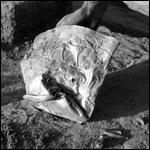 Урартские воины погибли при попытке украсть золотую чашу