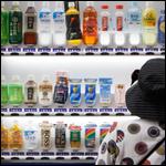 В Японии торговые автоматы предупредят о землетрясениях