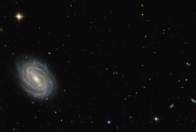 Представлено изображение галактики в созвездии Змеи