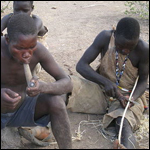 Африканские любители меда оказались эксплуататорами птиц