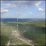 Для изучения климата в джунглях Амазонии построят гигантскую башню