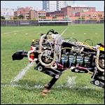 Робот-гепард научился бегать без поводка
