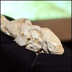 Во Франции найдена первобытная статуэтка обнаженной женщины