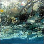 Ученые выяснили судьбу пластмассы в мировом океане