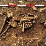 Британские археологи описали великана бронзового века