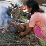 Ученые рассказали о преимуществах кишечника индейцев над европейским