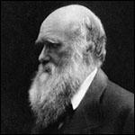 Исследователи назвали Дарвина плагиатчиком