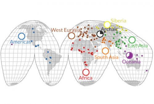 Ученые рассказали об утрате ДНК по мере эволюции человека