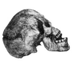 Кто оставил этo миллионы лет назад?