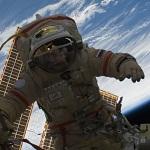 Ученые доказали, что в космосе можно зачать здоровое потомство