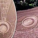 В Великобритании найдены круги, нарисованные пришельцами