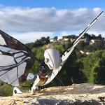 Французский инженер создал робота-бабочку