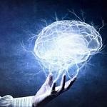 Как знание нескольких языков влияет на головной мозг?
