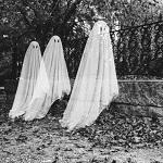 Почему мы верим в привидения и даже видим их?