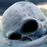 Ученые считают гибель человечества очень вероятной